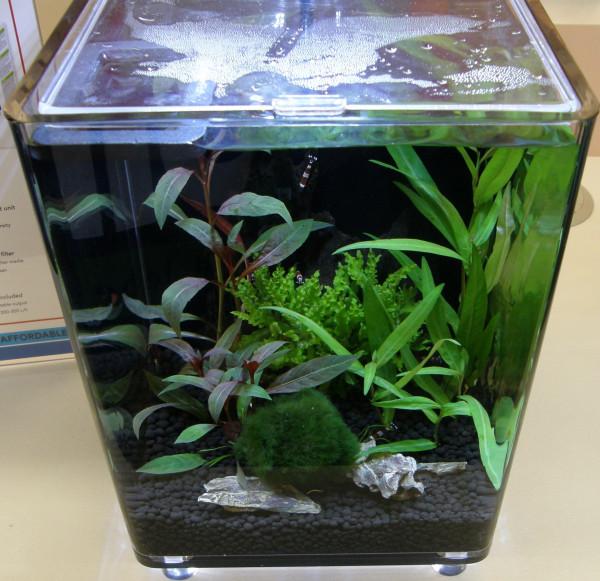 Nano II, Set Aquarium 15-25 l Pflanzen, Kies, Deko