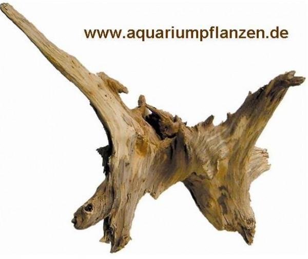 1 Kienwurzel 30-40 cm, Wurzel, Aquarium, Terrarium