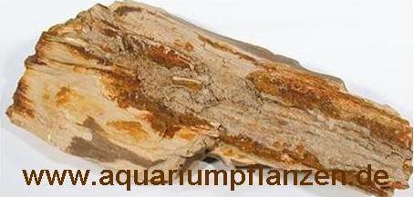ca. 1 kg versteinertes Holz, Deko, Aquarium