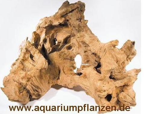 1 Mooreichenwurzel 20-30 cm Wurzel, Aquarium, Moor