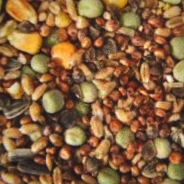 2,5 kg Taubenfutter, Spezialfutter für Tauben, Züchterqualität, Vogelfutter