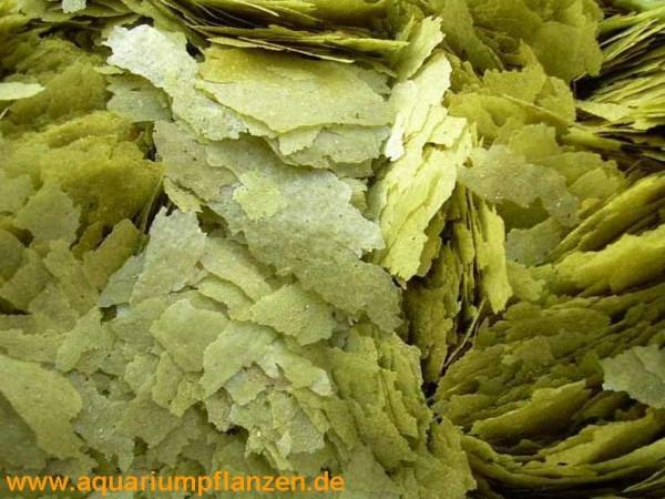 250 ml Flockenfutter grün, Hauptfutter